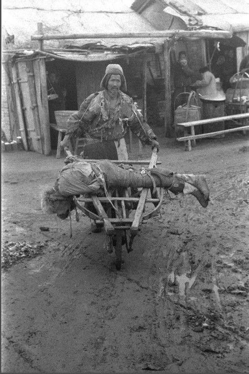 河南1942