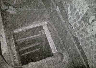 男子狗窖中拘禁两女子当性奴 获刑十年半